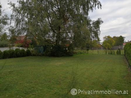 Haus / Einfamilienhaus und Villa - Miete - 3452 Heiligeneich - 233498
