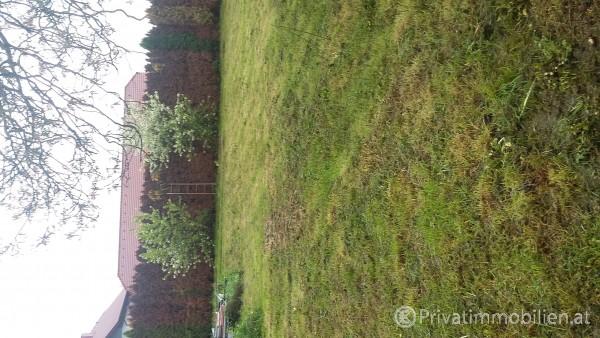 Grundstück für Betriebsansiedelung / Wohnbau - 4614 marchtrenk - 227113