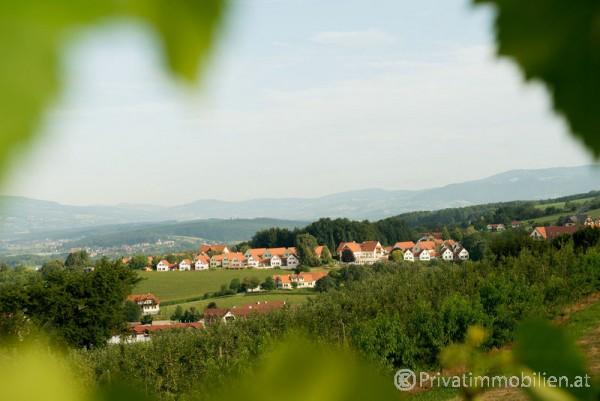 Ferienhaus / Ferienwohnung - Miete - 8271 Bad Waltersdorf - 230688