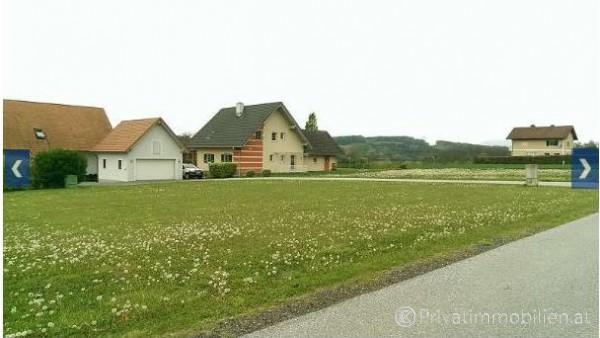 Grundstück für Einfamilienhaus / Villa - 8273 Ebersdorf - 236431