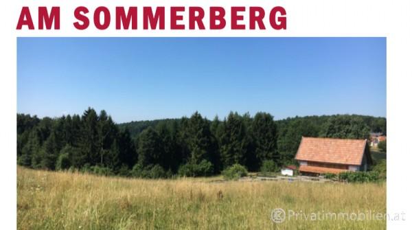 Grundstück für Einfamilienhaus / Villa - 8321 St. Margarethen/Raab - 237491