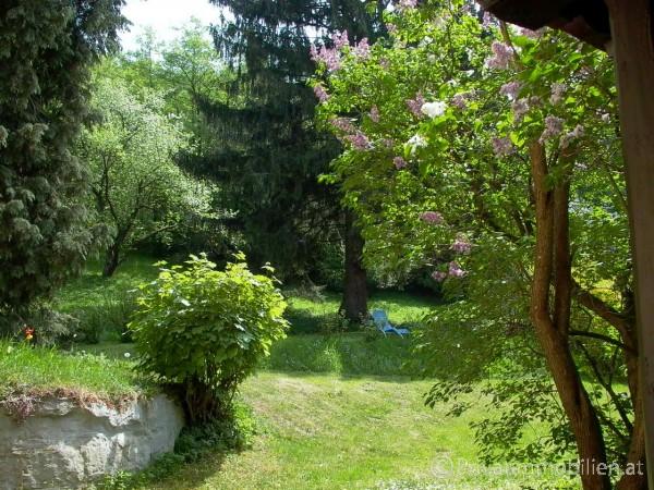 Grundstück für Einfamilienhaus / Villa - 3021 Pressbaum - 237703