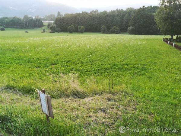 Grundstück für Einfamilienhaus / Villa - 3683 Yspertal - 238469