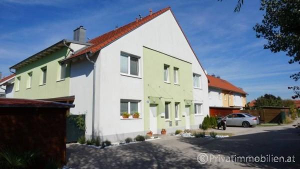 Haus / Einfamilienhaus und Villa - Miete - 3133 Stollhofen - 239269