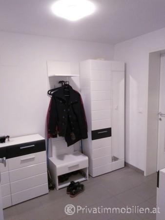 Genossenschaftswohnung - 2700 Wr. Neustadt - 239433