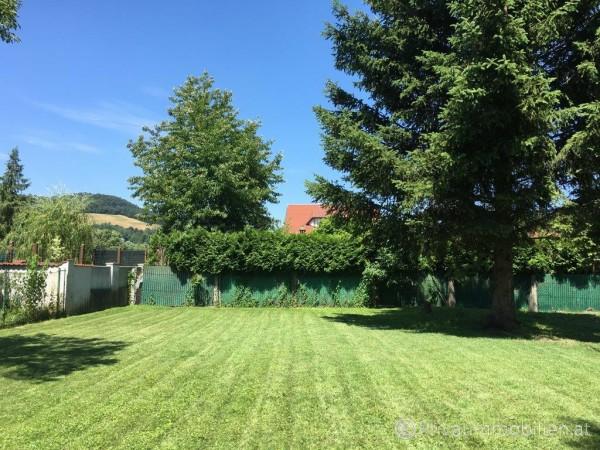 Haus / Einfamilienhaus und Villa - Kauf - 2803 Schwarzenbach - 239475