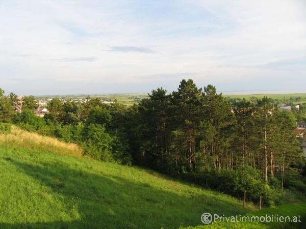 Grundstück für Ferienhaus / Ferienwohnung - 7100 Neusiedl am See - 239749