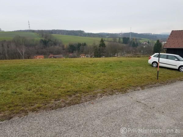 Grundstück für Einfamilienhaus / Villa - 2721 Kaumberg - 239931
