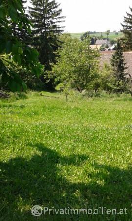 Grundstück für Einfamilienhaus / Villa - 2191 Höbersbrunn - 239989