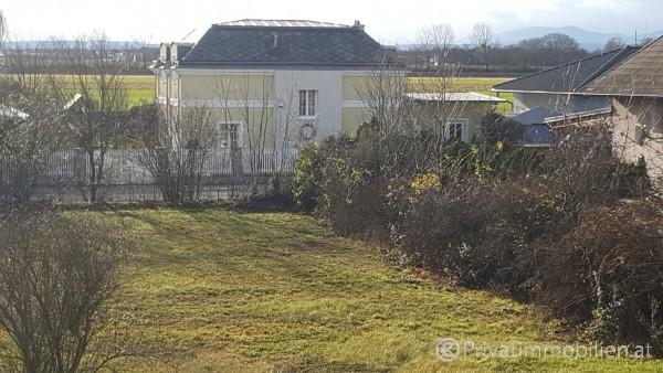 Grundstück für Einfamilienhaus / Villa - 2521 Trumau - 240291