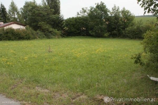 Grundstück für Einfamilienhaus / Villa - 2560 Ödlitz / Berndorf - 240665