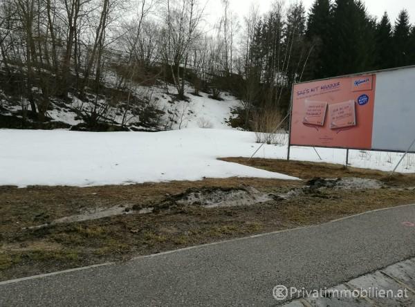 Grundstück für Einfamilienhaus / Villa - 3920 Groß Gerungs - 240819