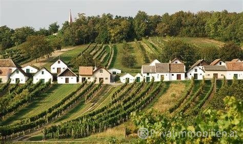 Ferienhaus / Ferienwohnung - Kauf - 2061 Obritz - 241221