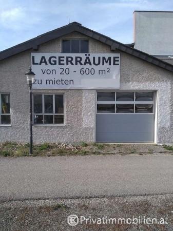 Betriebsobjekt / Halle / Lager / Werkstatt - 3390 Melk - 241903