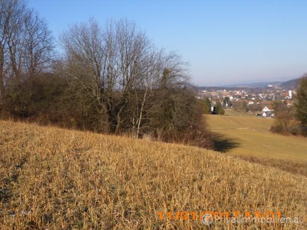 Grundstück für Betriebsansiedelung / Wohnbau - 7551 Stegersbach - 242074