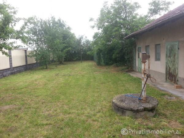 Grundstück für Einfamilienhaus / Villa - 2291 Lassee - 242296