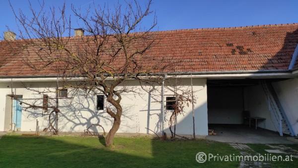 Haus / Einfamilienhaus und Villa - Kauf - 3454 Zwentendorf - 247056