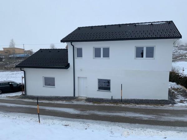 Haus / Einfamilienhaus und Villa - Kauf - 4264 Grünbach - 247726