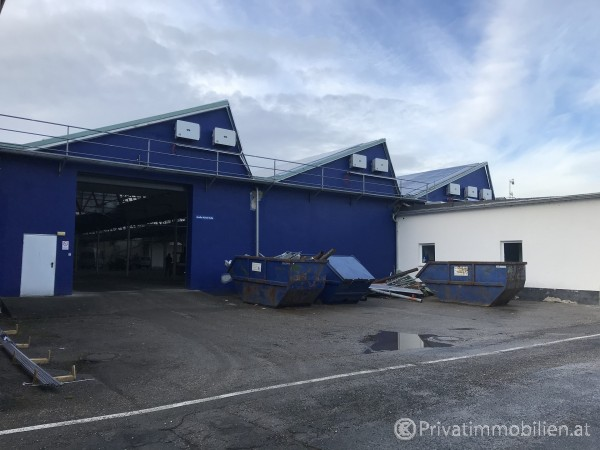 Betriebsobjekt / Halle / Lager / Werkstatt - 3381 Golling an der Erlauf - 247896